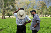 Knowledge management for effective policy influence: The case of Agua Verde | The CIAT Capacity Blog | KnowledgeManagement | Scoop.it