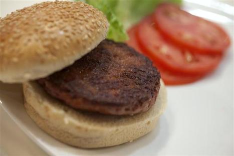 Le premier steak créé in vitro financé par le fondateur de Google | Les sources | Scoop.it