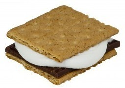 Book S'mores   Young Adult Novels   Scoop.it