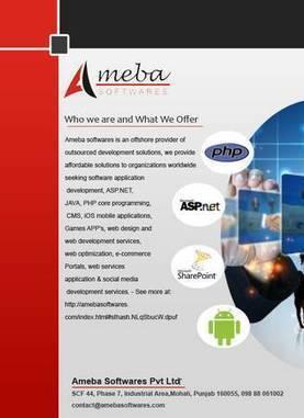 Application Development Company | Ameba Softwares Pvt LTD | Scoop.it
