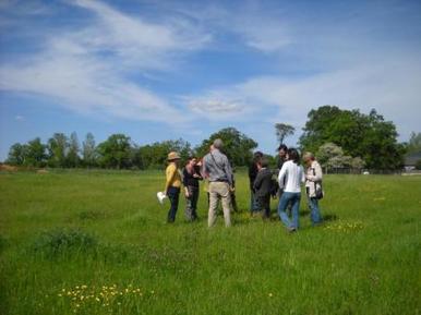 Participer à l'OAB | Observatoire Agricole de la Biodiversité | Variétés entomologiques | Scoop.it