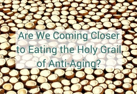 Are We Coming Closer to Eating the Holy Grail of Anti-Aging? | Santé ! | Scoop.it
