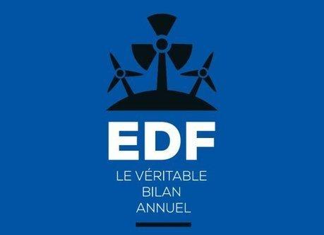 Le véritable bilan annuel d'EDF : pourquoi l'Etat actionnaire devient totalement schizophrène | Green economic development and social changes | Scoop.it