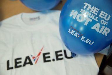 Ethnic minorities could hold key to Britain's EU vote | ESRC press coverage | Scoop.it