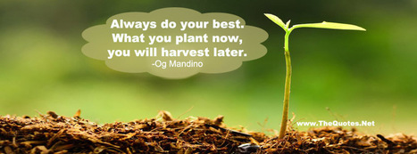 Inspirational Og Mandino Quotes | TheQuotes.Net - Motivational Quotes | Quotes | Scoop.it