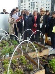 La RATP veut investir dans l'agriculture urbaine –  – Environnement-magazine.fr | Agriculture urbaine et rooftop | Scoop.it