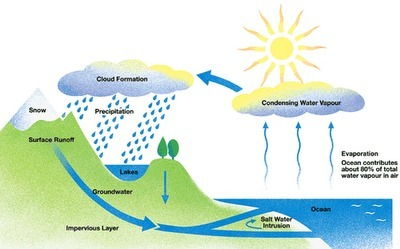 IELTS Writing - Task 1 - Diagram (Water Cycle) - Band 9 | IELTS PREPARATION | water cycle | Scoop.it