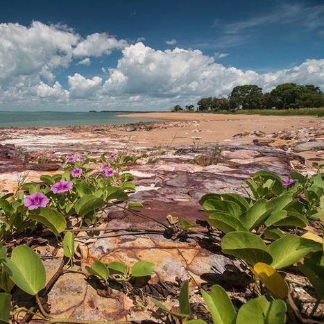Kenbi Land Claim: Emotions run high ahead of hand back | Aboriginal and Torres Strait Islander Studies | Scoop.it