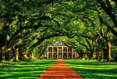 Tweet from @mrTechFeed | Oak Alley Plantation: Things to see! | Scoop.it