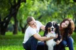 Keeping Your Pets Cool in The Summer Heat | Burgess Pet Care | Dogs | Scoop.it