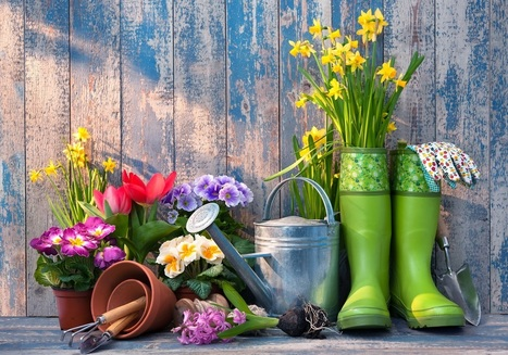 Smart Garden Tools and Gadgets 2016 | Your Daily Experience | Your Daily Experience | Scoop.it