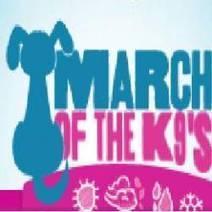 Dog walking Leeds | March Of The K9s | Scoop.it