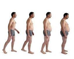 Sortie de crise, à quel poids? Alimentation et obésité - euroClinix | Obésité & perte de poids | Scoop.it