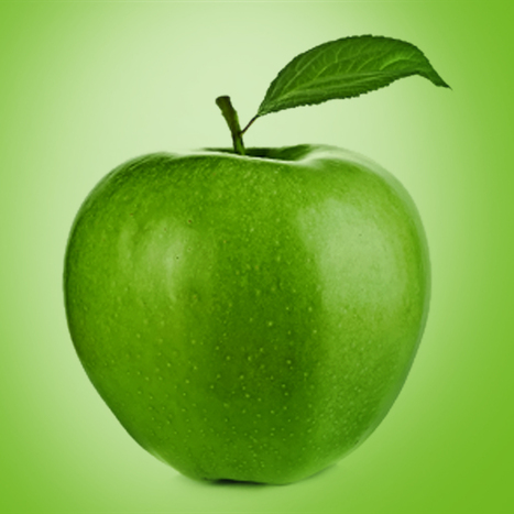 My Diet Apps | Web Designing Company | Scoop.it