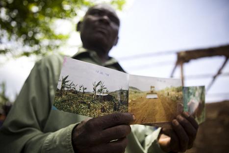 L'appropriation des terres agricoles mondiales, une rente ... - Observatoire des multinationales | Mondialisation & Politique internationale | Scoop.it