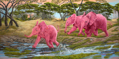 A Splash of Pink | Wildlife Art by: Laura Curtin | Good News for Artists | Scoop.it