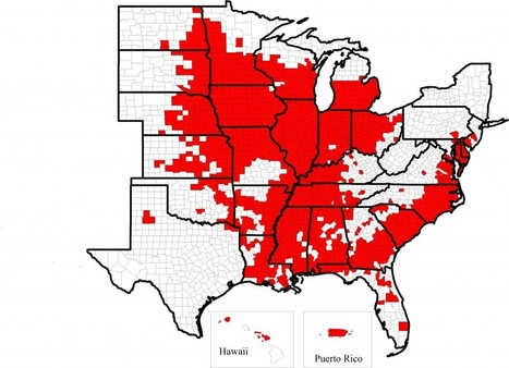 Soybean Cyst Nematode Distribution in USA as of 2014 | Field ... | Plant-parasitic nematodes | Scoop.it