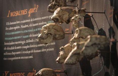 Evolucionando con Darwin - El País.com (España) | ciencia en la escuela | Scoop.it