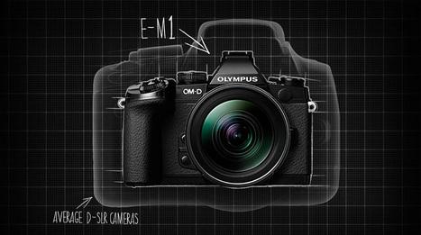 La cámara… ¿con o sin espejo? | Fotografía hoy | Scoop.it