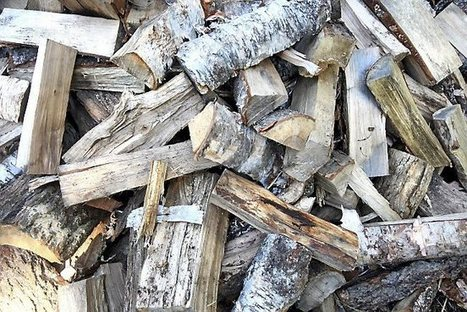 Minnesota firewood shortage 'unprecedented', timber exec says | Timberland Investment | Scoop.it