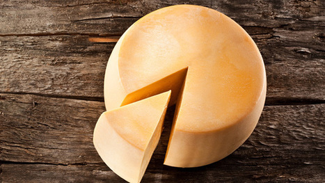 How a massive environmental crisis led to the invention of cheese | enjoy yourself | Scoop.it