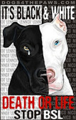 Bunny's Blog: Dogs for the Paws Launches Anti-BSL Promotion | Pet News | Scoop.it