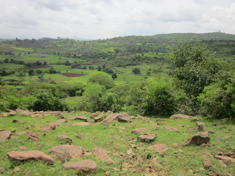 Re-thinking resilience in the Fogera Region of Ethiopia - Agriculture and Ecosystems Blog | Friday Links | Scoop.it