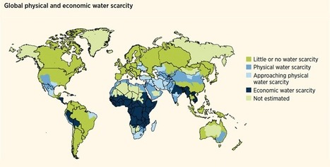 Water scarcity | International Decade for Action 'Water for Life' 2005-2015 | Yr 7 Geog - Water | Scoop.it