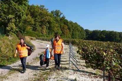 UNESCO : la Champagne nettoie ses coteaux - Terre de Vins | Le vin quotidien | Scoop.it