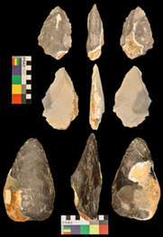 El lenguaje y la capacidad de fabricar herramientas evolucionaron a la vez | Arqueología, Historia Antigua y Medieval - Archeology, Ancient and Medieval History byTerrae Antiqvae (Grupos) | Scoop.it