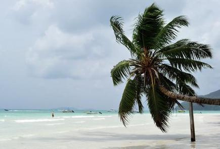 Les Seychelles se lancent dans l'énergie renouvelable - RTL.be | 01 Océan indien DD | Scoop.it