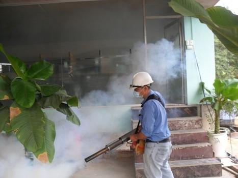 Diệt côn trùng tận gốc, diệt côn trùng theo định kỳ có bảo hành tại Hà Nội | Dịch vụ di động | Scoop.it