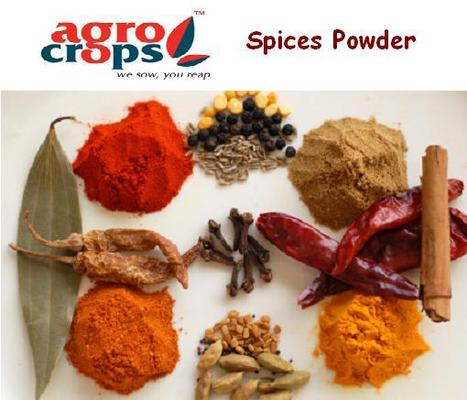 Indian Spices Powder Suppliers, Spices Powder Exporter in India | Agrocrops | Scoop.it