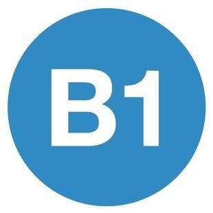Séries d'exercices - B1 intermédiaire | Remue-méninges FLE | Scoop.it