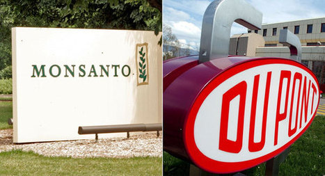 #Monsanto, #DuPont pour millions into #GMO fight - Politico | Messenger for mother Earth | Scoop.it