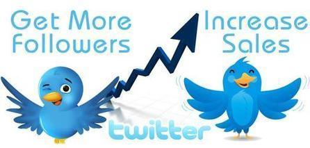 Increase Twitter Follower | SEO Services Australia | Scoop.it