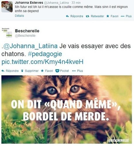 Bescherelle ta mère | éducation_nouvelles technologies_généralités | Scoop.it