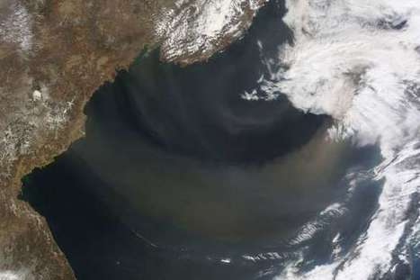Intensity of desert storms may affect ocean phytoplankton | Sustain Our Earth | Scoop.it