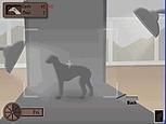 Greyhound Tycoon - Mini Games - play free mini games online | minigamesonline | Scoop.it