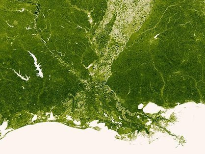 NOAA's new interactive map shows all the vegetation on the planet | JOIN SCOOP.IT AND FOLLOW ME ON SCOOP.IT | Scoop.it