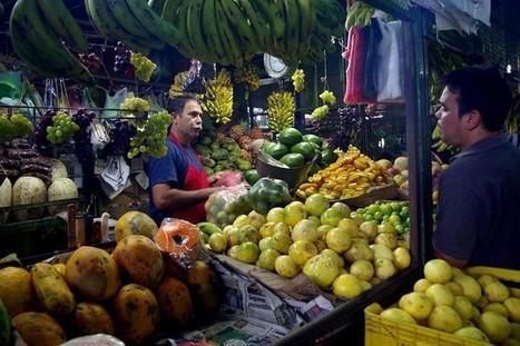 Venezuela: Pomme de terre et banane, les reines du marché | Venezuela | Scoop.it