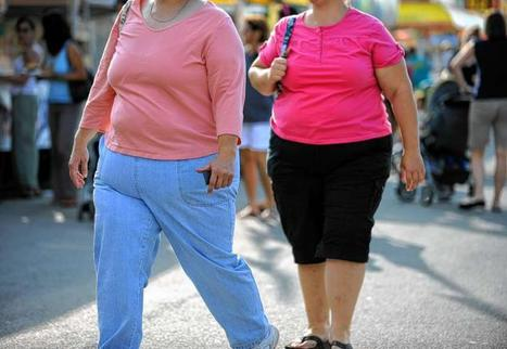 Number of obese Americans to climb to 42% by 2030, CDC finds and could cost $550 billion over 20 years | Medical Alerts | Scoop.it