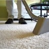 My Newly Makeover Carpets
