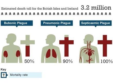 BBC - KS3 Bitesize History - The Black Death : Revision, Page 4 | The Black Death | Scoop.it