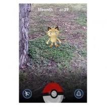 Pokémon Go, nid à problèmes de sécurité - Attention automobiliste ! | Wallgreen - Louez moins cher et passez au vert ! | Scoop.it