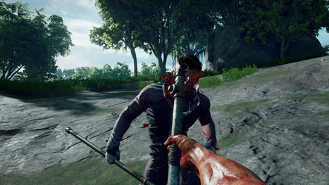 Steam's Latest Hit Is Basically A Hunger Games Video Game | News and games | Scoop.it