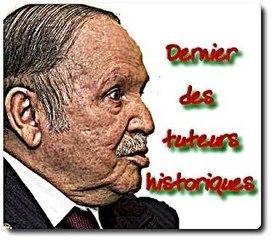 Qui après Bouteflika ? Premiers résultats du mini-sondage - AKHBAR-DZAER | Révolution démocratique à travers le Monde | Scoop.it