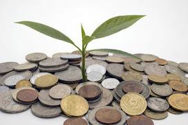 La importancia del Administrador de Empresas en la construcción de un Futuro Sostenible | Negocios Y Emprendimiento | Emprenderemos | Scoop.it