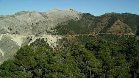 Un estudio defiende la declaración de Sierra Bermeja como Parque Nacional | Geografia de España | Scoop.it