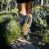Trail Running for Beginners   Power :: Endurance :: Fitness   Scoop.it